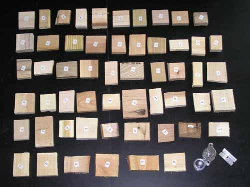 Wood Identification Samples Kit | Firewood Treasures: Wood ...